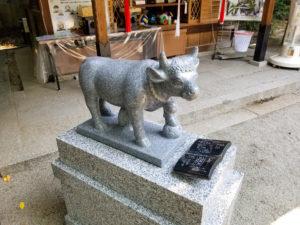 白峯神宮様 牛の像奉納